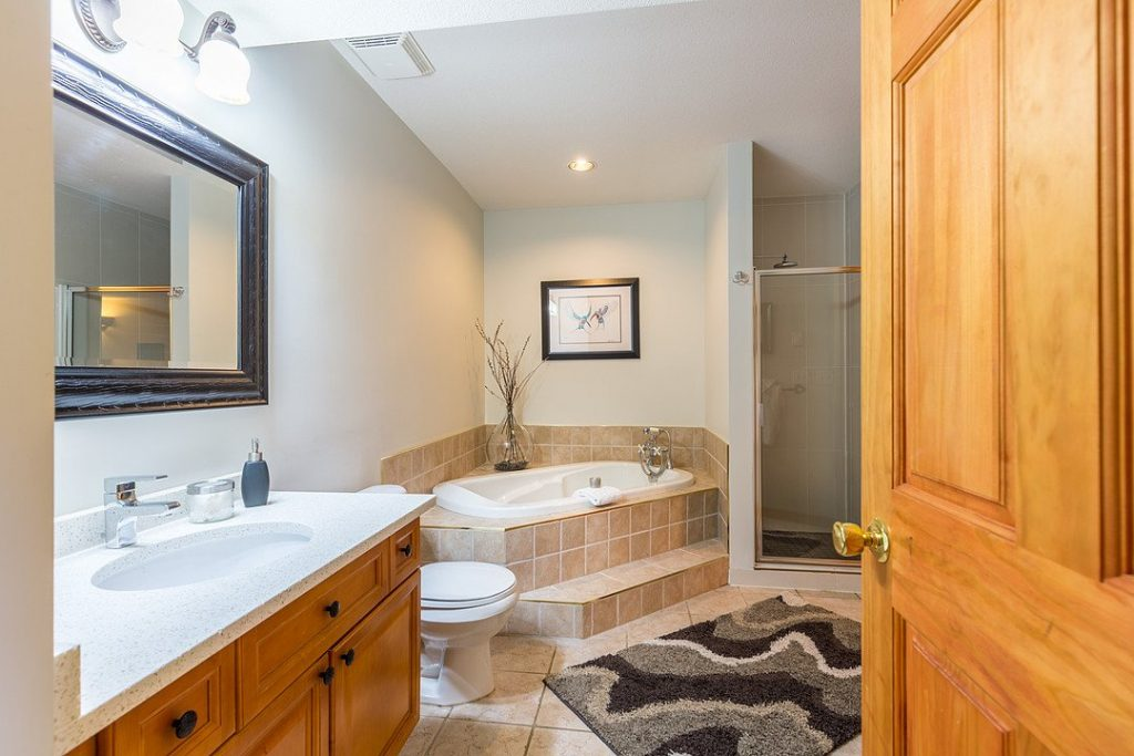 Luxury Suite Soaker Tub and Shower