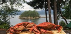 Crab Dinner Trip : $295 – 2hours